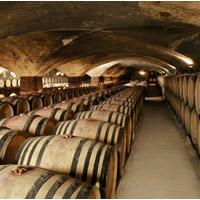 OenoPass Bourgogne