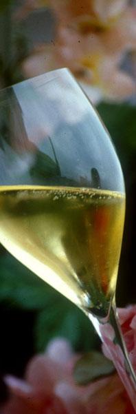 Via Champagne-Ardenne